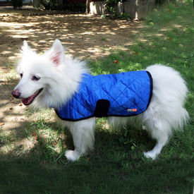 Hydro Kyle Dog Cooling Coat for Large to Giant Breed Dogs, blue, xl