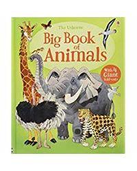 Big Book Of Big Animals