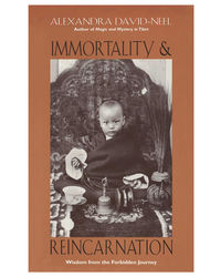 Immortality And Reincarnation