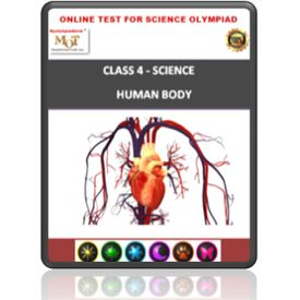 Class 4, Human Body, Online test for Science Olympiad