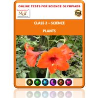 Class 2 Science Worksheets- Plants
