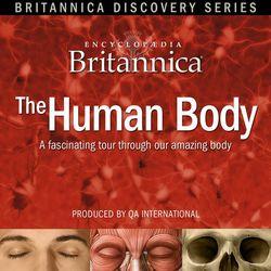 BDS Human Body CD ROM