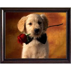 Puppy with Rose, 8 x 10 inches