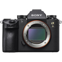 Sony Alpha a9 Mirrorless Camera