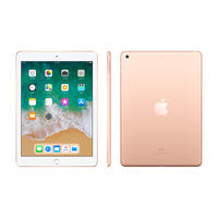 "Apple iPad 6th Gen Wi-Fi 128GB 9.7"" , Gold"