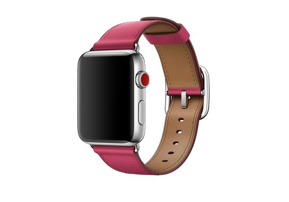 Apple Classic Buckle 42mm Berry