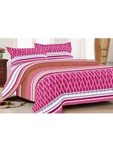 iSleepy Beautiful Polycotton Bed Sheet With 2 Pillow Covers (SLVR7), multicolor