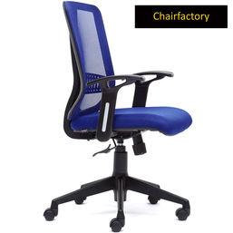 Patrik ECO Ergonomic Staff Chair, royal blue