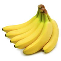 Robusta Banana