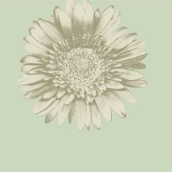 Elementto Wall papers Floral Design Home Wallpaper For Walls, sea green