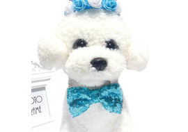 Imported Party Bowknot Elastic Collar for Cat and Small Dog, light blue