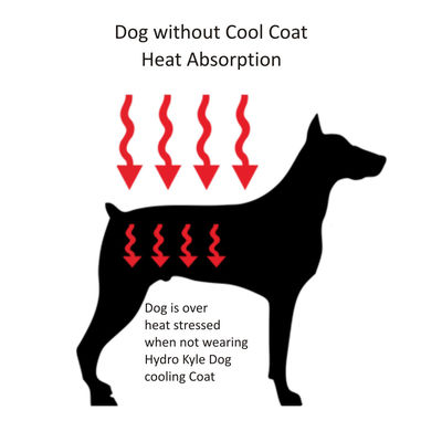 Hydro Kyle Dog Cooling Coat for Toy Breed Dogs, blue, extra small