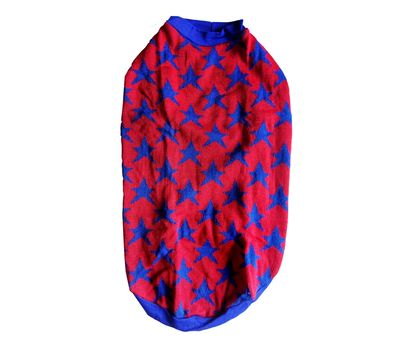 Rays Woollen Warm Sweater for Large Dogs, 26 inch, red navy stars