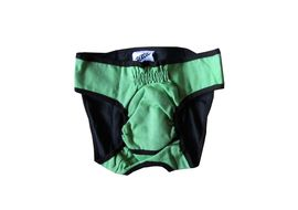 Zorba Washable Diaper for Small Dogs, green, small