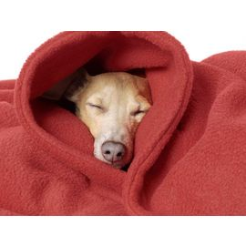 Rays Designer Premium Fleece Warm Blanket for All Dogs Cats, red, 54 x 36 inch
