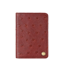 CHATEAU 03 CARD CASE OSTRICH,  brown