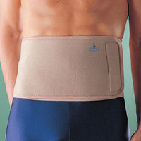Waist Belt (One size fits all)