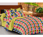 Casa Basics Double Bedsheet With 2 Pillow Cover (CBEZ230230144098), multicolor