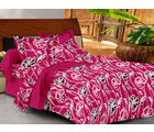 Casa Basics Double Bedsheet With 2 Pillow Cover (CBEZ230230144027), multicolor