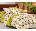 Casa Basics Double Bedsheet With 2 Pillow Cover (CBEZ230230144022), multicolor