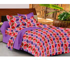 Casa Basics Double Bedsheet With 2 Pillow Cover (CBEZ230230144099), multicolor