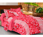 Casa Basics Double Bedsheet With 2 Pillow Cover (CBEZ230230144108), pink and white