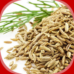 Cumin Seeds / Jeera, 100 grams