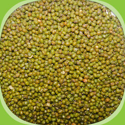 Green gram whole / Pachai Payaru (Unpolished), 500 grams