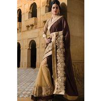 Gold Net & Georgette Saree in Brown Pallu