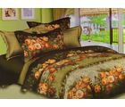 Welhouse Cotton Double Bedsheet with 2 Pillow Cover (NGL-003), multicolour