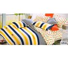 Welhouse India Lineing Print Cotton King Bedsheet with two pillow covers (AZR006), multicolor