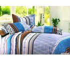 Welhouse Cotton Double Bedsheet with 2 Pillow Cover (TT-017), multicolour