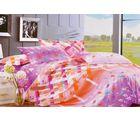 Welhouse Cotton Double Bedsheet with 2 Pillow Cover (TT-009), multicolour
