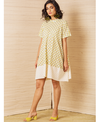 Jodi Salt Swing Dress