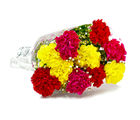 Giftacrossindia Bouquet of Ten Colorful Carnations (GAIMPHD0057)