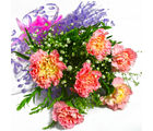 Giftacrossindia Bunch of Six Pink Carnations (GAIMPHD0582)