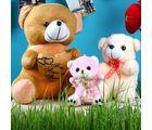 Giftacrossindia Teddy Combo For Mothers Day (GAICORMOT2017026)