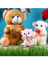 Giftacrossindia Teddy Combo For Mothers Day (GAICO...