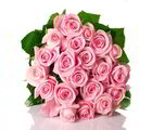 Giftacrossindia Love Special Bouquet Of Cute Pink Roses (GAIVALHD20190151)