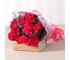 Giftacrossindia Lovely Pink Carnations Bouquet (GAIMPHD0512)