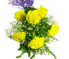Giftacrossindia Six Yellow Carnations Bunch (GAIMPHD0575)