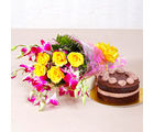 Giftacrossindia Yellow Roses and Orchids with One Kg Chocolate Cake (GAIMPHD0345)