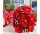 Giftacrossindia Bouquet Of Red Gerberas In Tissue (GAIVALHD20190495)