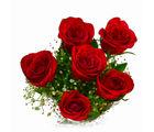 Giftacrossindia Full Bloom Red Roses Bunch (GAIMPHD0553)