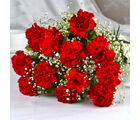 Giftacrossindia Bouquet of Dozen Red Carnations (GAIMPHD0002)