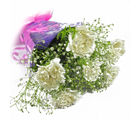 Giftacrossindia Six White Carnations Bunch (GAIMPHD0576)