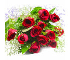 Giftacrossindia Bunch of Fresh 12 Red Roses (GAIMPHD0573)