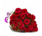 Giftacrossindia Bouquet of Twenty Red Roses (GAIMPHD0530)