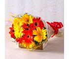 Giftacrossindia Refreshing Gerberas Bouquet (GAIMPHD0066)