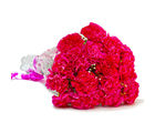 Giftacrossindia Beautiful Fifteen Pink Carnations Bouquet (GAIMPHD0042)